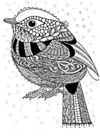 Детские раскраски для девочек и мальчиков. птица