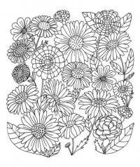 Раскраски для взрослых. разные цветы