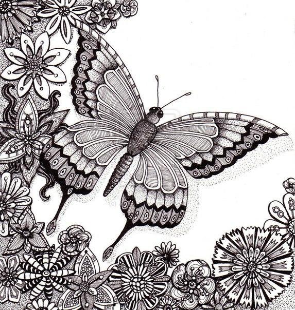 Раскраски антистресс бабочка в окружении цветов