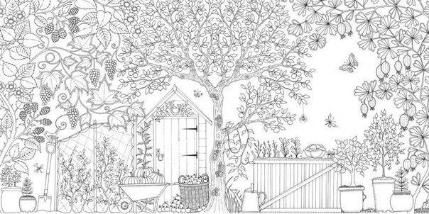 Раскраски антистресс, сад, бабочки, деревья, фрукты в корзинах