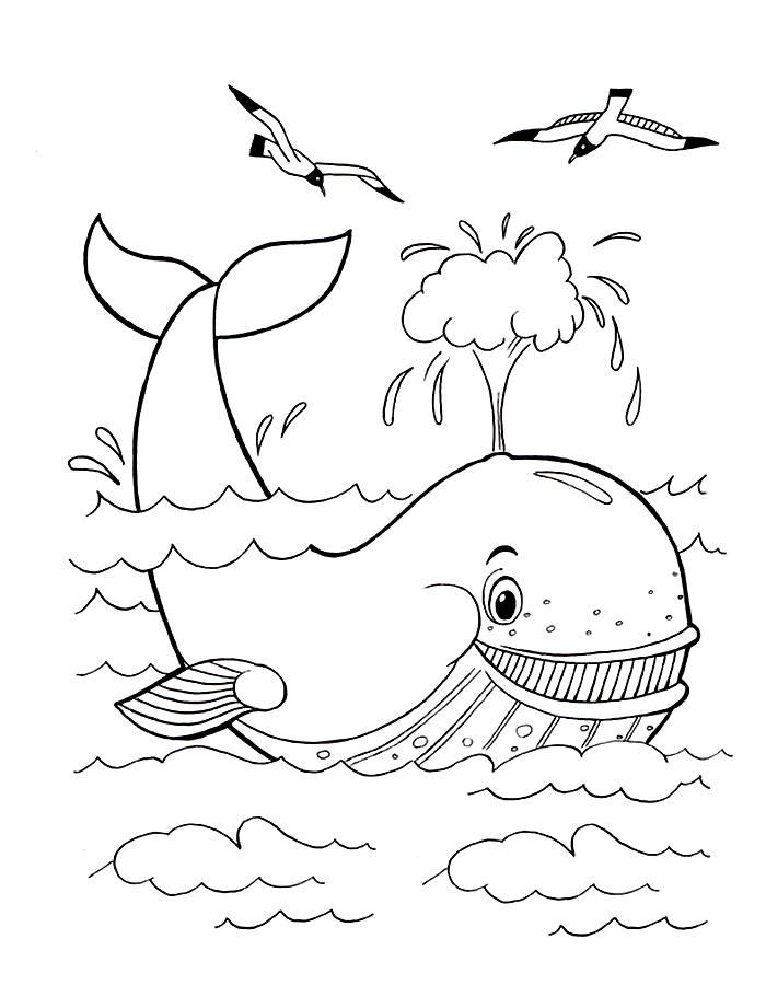 Детские раскраски для девочек и мальчиков. кит с фонтаном воды