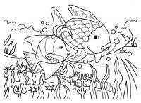 Раскраски море природа подводный мир рыба рыбки море