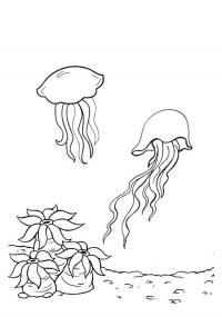 Раскраски подводный мир медузы, кораллы