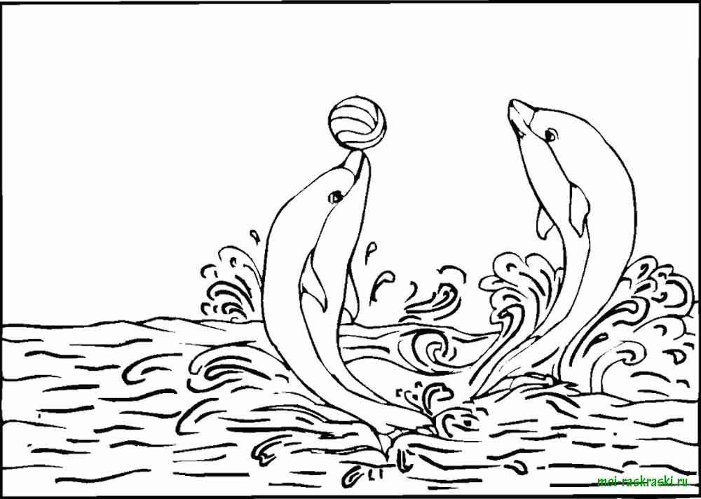 Дельфины играют в мяч, скачать или распечатать раскраску распечатать скачать
