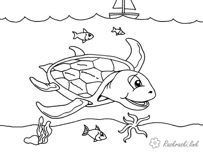 Раскраски рыба природа подводный мир море черепаха рыба