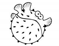 Детские раскраски для девочек и мальчиков. раздувающаяся рыбка