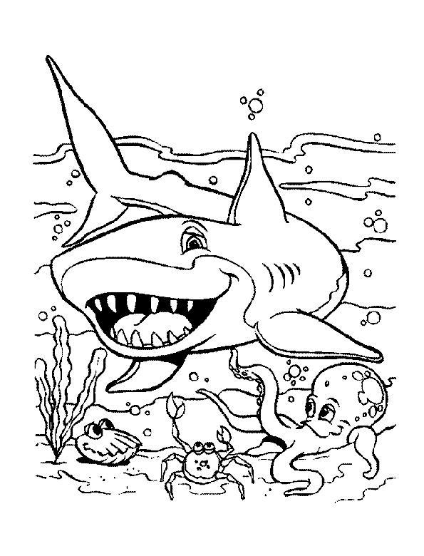 Раскраски подводный мир природа подводный мир акула рыбки