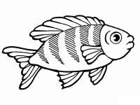 Раскраски подводный мир подводный мир, полосатая рыбка