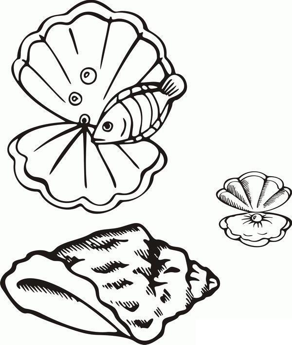 Раскраски подводный мир жемчужина ракушка рыбка природа подводный мир