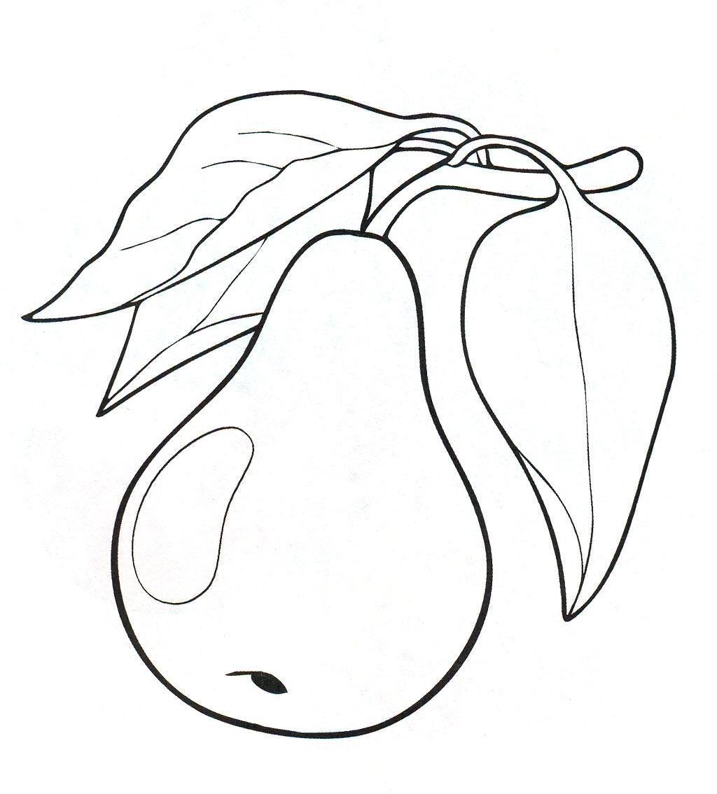 Раскраски детская детская раскраска растения груша