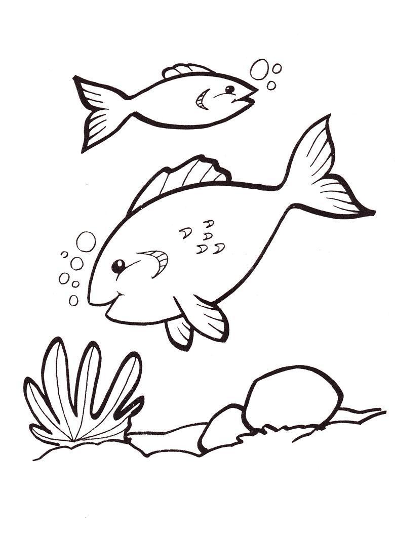 Широкий контур Раскраски детская детская раскраска подводный мир,  рыбы,  водоросли Раскраски распечатать