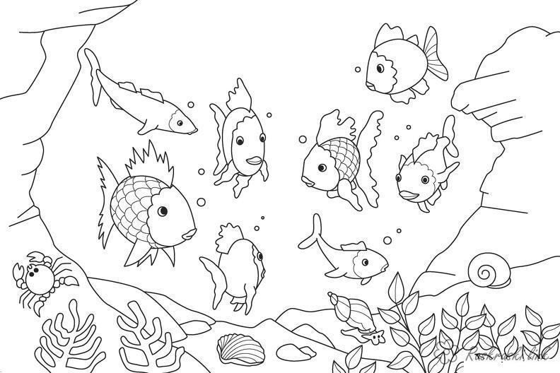 Рыбки Раскраски подводный природа подводный мир рыбки океан Раскраски распечатать
