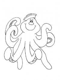 Раскраски осьминог природа подводный мир осьминог фуражка