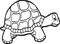 Раскраски подводный мир природа подводный мир черепаха
