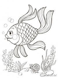 Раскраски водоросли подводный мир, рыбка, водоросли,  улитка