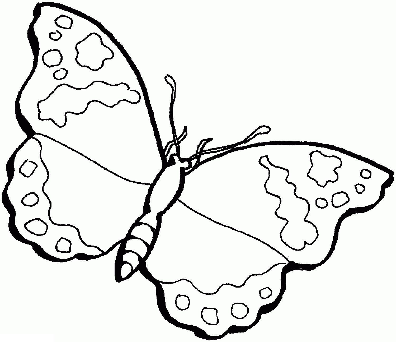 Много детских раскрасок. бабочка