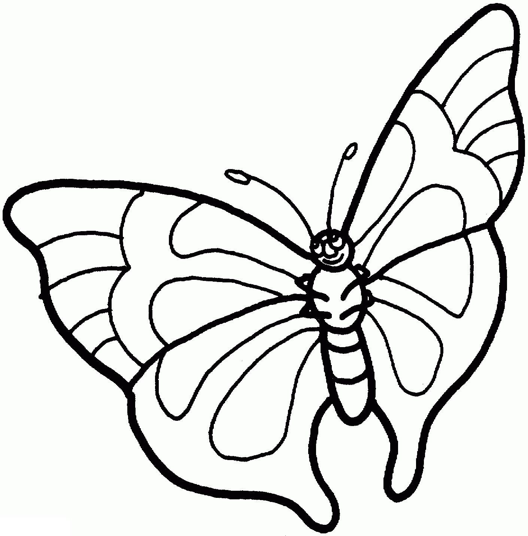 Раскрасить бабочку с красивыми крыльями