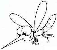Комар с длинным носиком