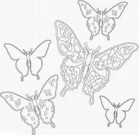 Раскраски бабочек