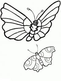 Раскрасить бабочек