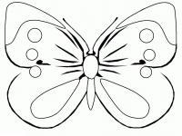 Большие раскраски детские. бабочка