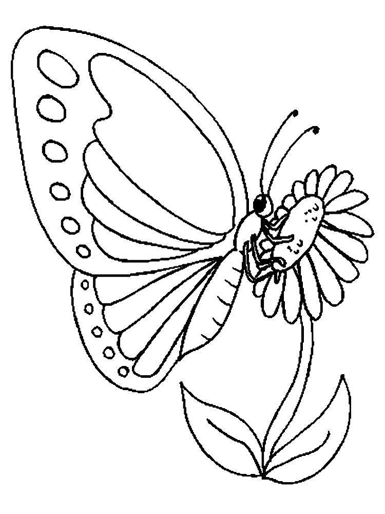 Раскраски насекомые детская раскраска насекомые, бабочка на цветке