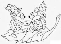 Раскраски насекомые детские раскраски, насекомые, друзья, божья коровка, божья коровка на листочке