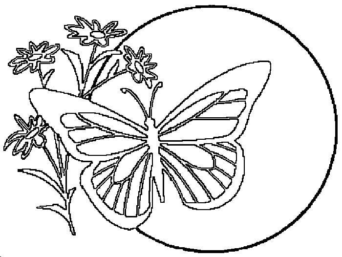 Раскраски бабочка на цветке на фоне солнца