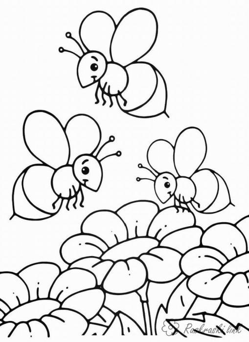 Раскраски насекомые детские раскраски-картинки