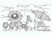 Раскраски явления природы детская раскраска явления природы