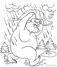 Раскраски дождь раскраски для детей, явления природы, природа, медведь, животные, раскраски животные, дождь
