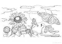 Раскраски детская детская раскраска явления природы