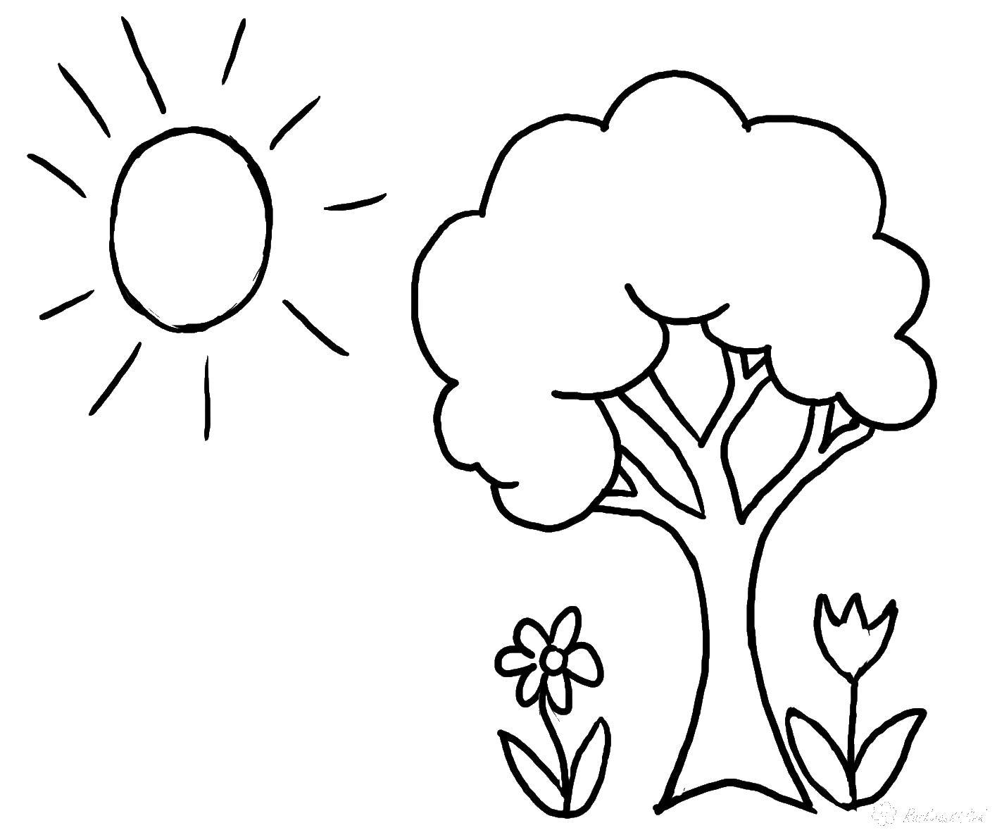 Раскраски солнце дерево солнце цветы