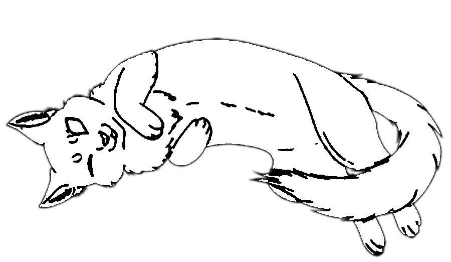 Раскраски вырезания кот контур, животные трафарет для вырезания