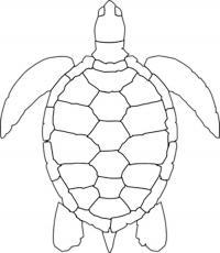 Раскраски вырезания черепаха трафарет, животные контур для вырезания из бумаги