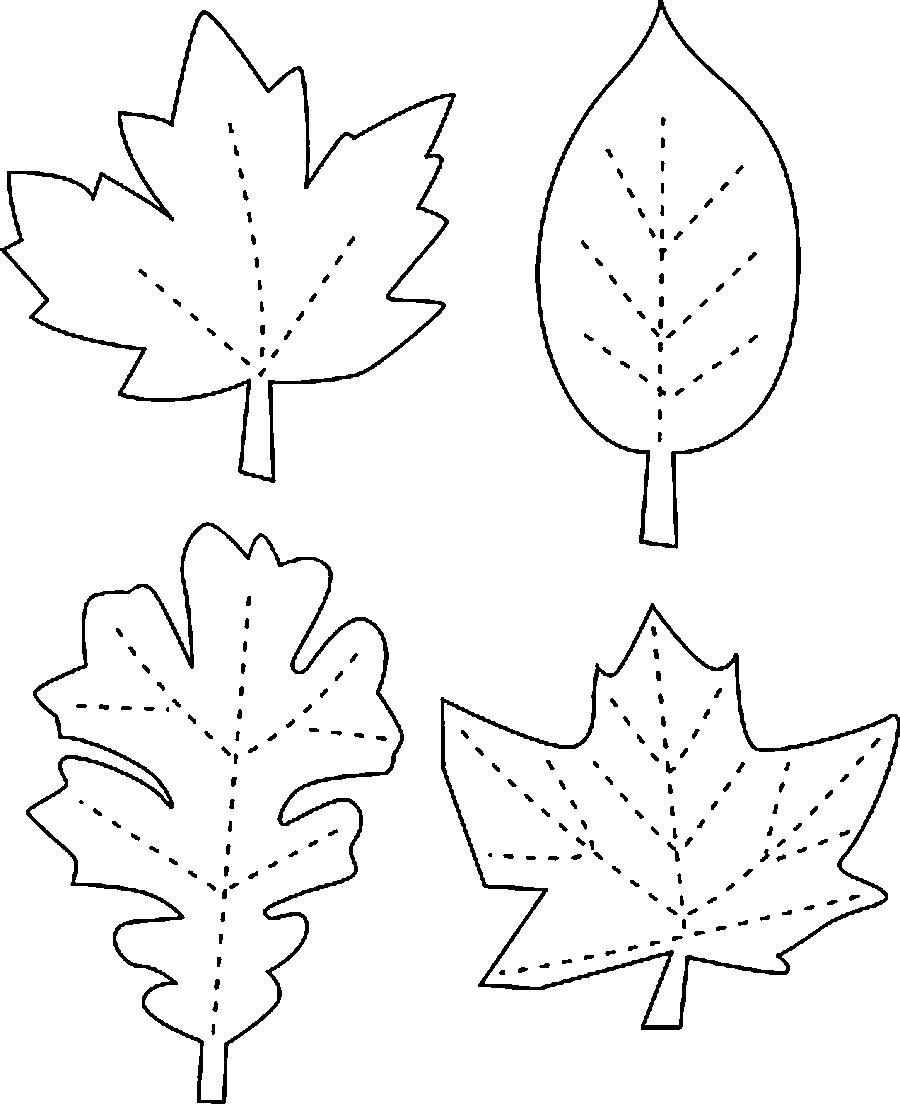Раскраска осенние листья скачать и распечатать.