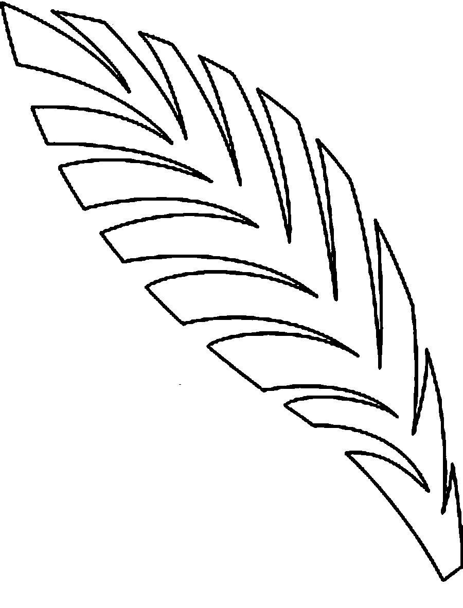 Листья пальмы раскраски