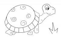 Раскраски черепаха раскраски для детей, животные, африка, черепаха