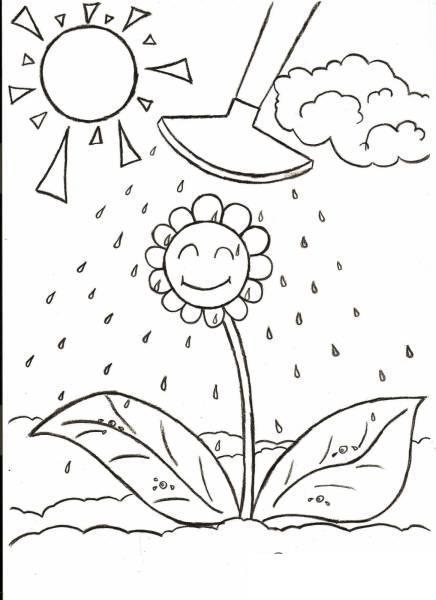 Раскраски лето раскраска лето цветочек лейка солнышко облака