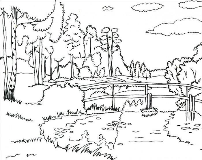 Раскраски года раскраска лето пейзаж березы речка мостик