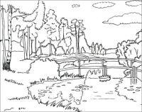 Раскраски лето раскраска лето пейзаж березы речка мостик