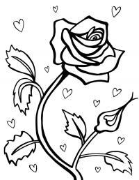 Роза и сердечки