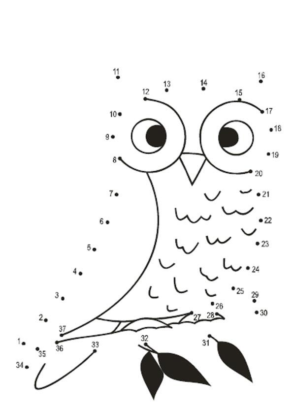 рисунки по точкам для детей 6 7 лет сова