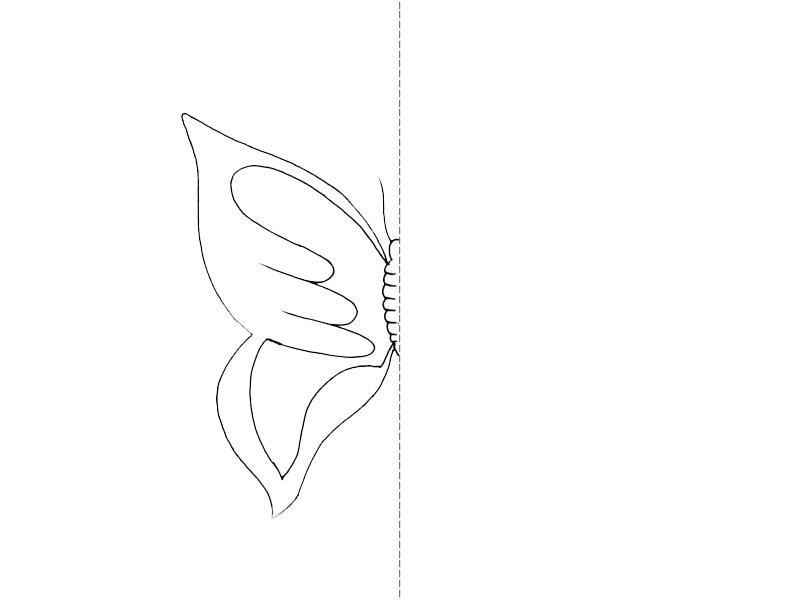 Раскраски образцу дорисуй бабочку по образцу, дорисуй половинку
