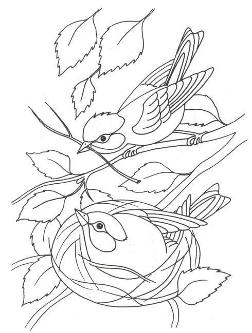 Раскраска. птицы весной в гнезде