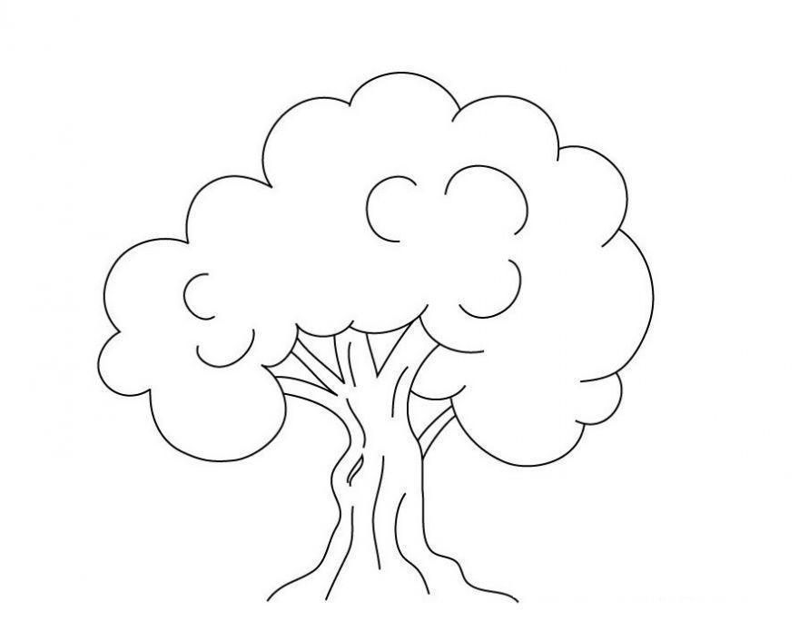 Раскраска дерево для детей на прозрачном фоне