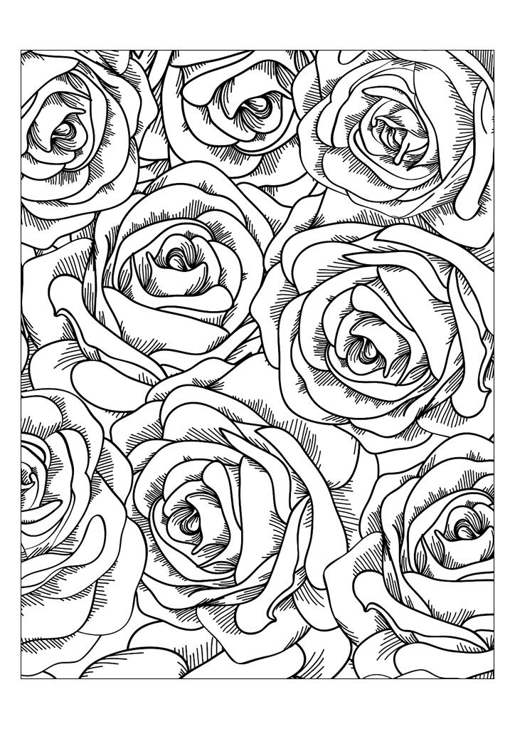 Розы, раскраски арт-терапия, картинки антистресс ...