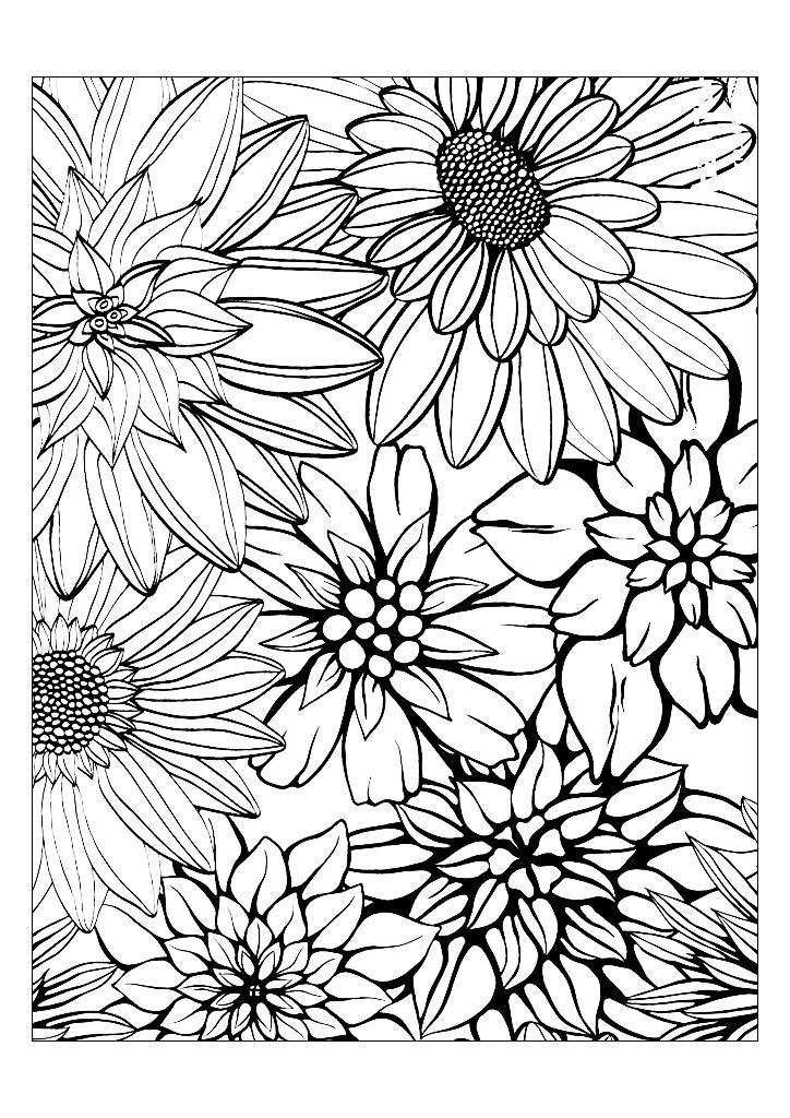 Раскраска. Цветы, раскраски арт-терапия, картинки ...
