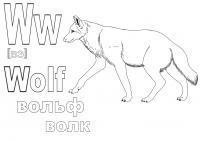 Немецкий алфавит в раскрасках вольф волк