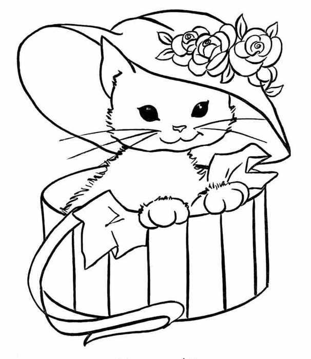 Раскраски кошки  раскраска, кошка, шляпа, ящик